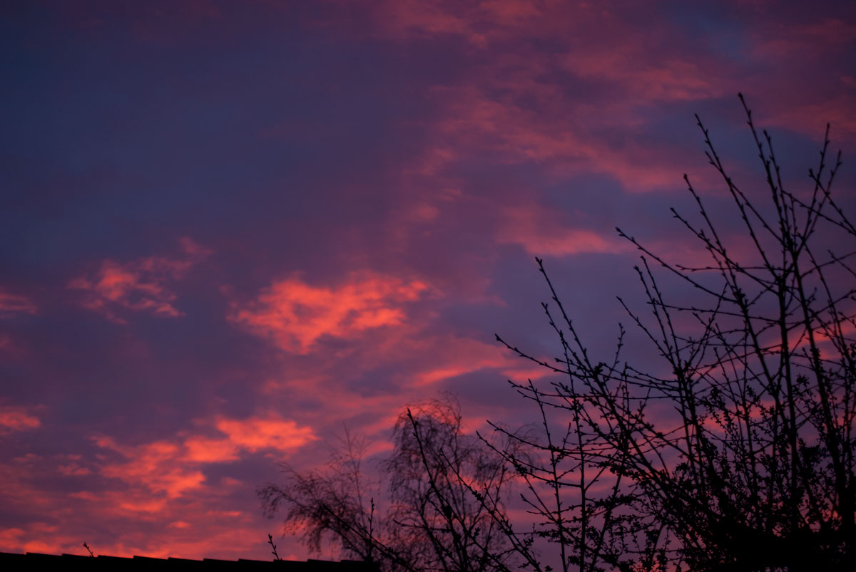 Sonnenaufgang - Nachgedachtes, Gedanktes & Gefreutes 5