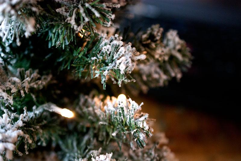 Unsere Corona-Weihnachten. Coronaler Jahresrückblick und eine Postkarte gegen das Virus. 7
