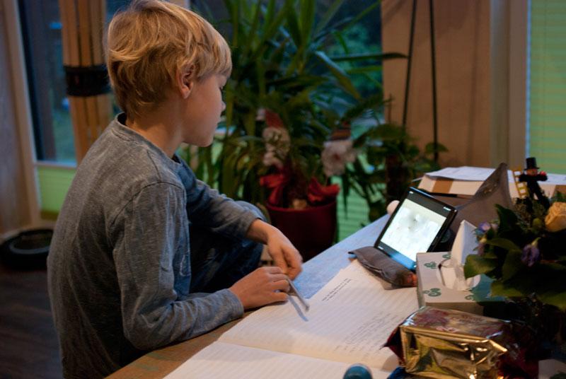 Corona Homeschooling 2021 - same procedure as last year, Mama 7