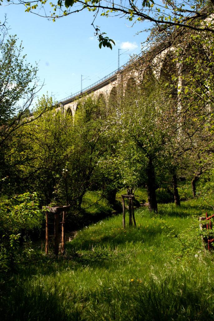 Familienausflug NRW: 3 Wandertipps für OWL 19
