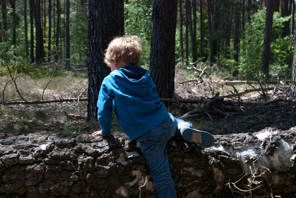 Familienausflug NRW: 3 Wandertipps für OWL 12